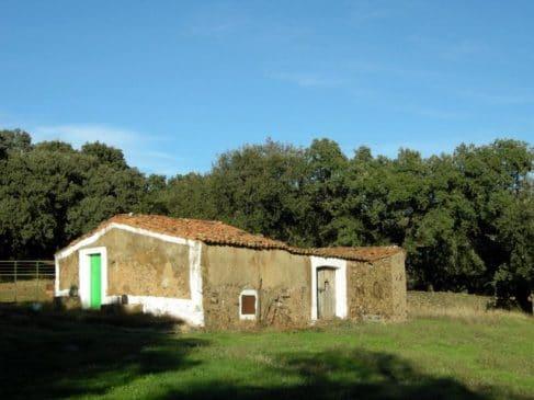 Finca con casa de campo para reformar (5,6 ha)
