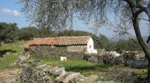 Terreno de encinas con cortijo en el sur de Extremadura