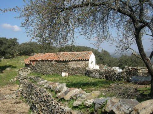 Terreno de encinas con cortijo en el sur de Extremadura (10 ha)
