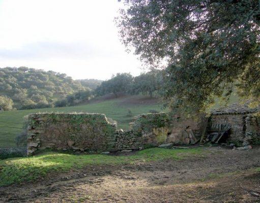 Antiguo cortijo en ruinas