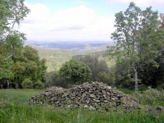 Pared de piedra para casa rústica
