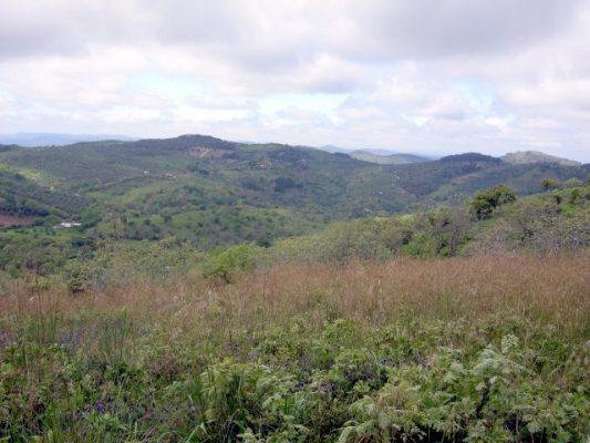 Foto de la Sierra de Tentudía