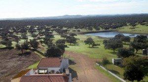 Dehesa de encinas en la Sierra de Huelva