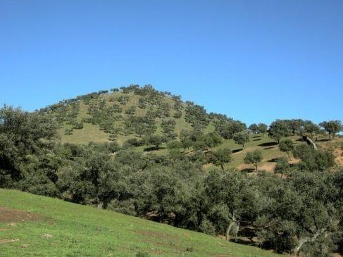Finca en la Sierra de Huelva