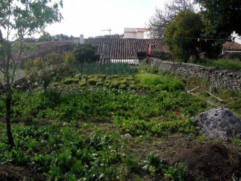 Venta de casa en la Sierra de Aracena