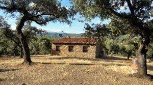 Finca en venta en el Parque Natural Sierra Aracena