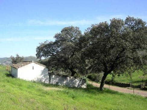 Cortijo en el Parque Natural Sierra de Aracena