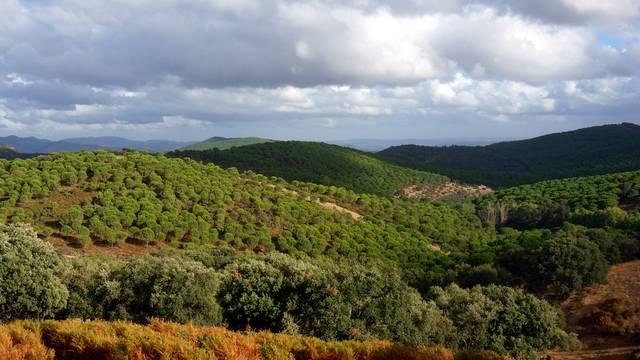 Finca rústica con vistas (8 ha), sur de Extremadura