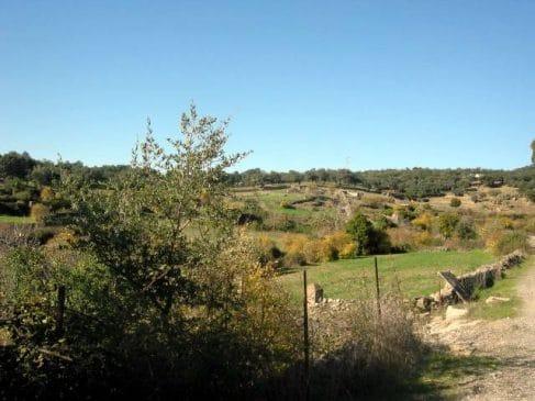 Parcela en la Sierra de Huelva