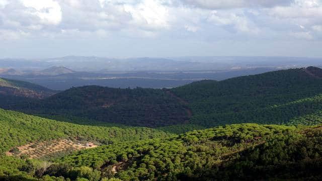 vistas-monasterio-tentudia