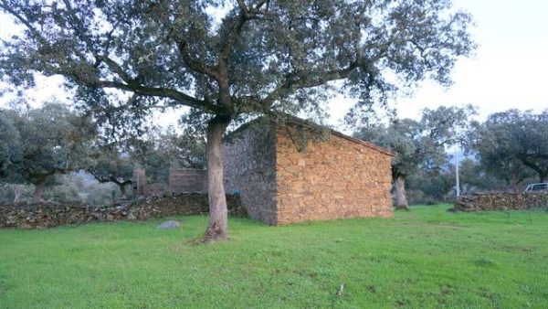 Casa de campo con encinas