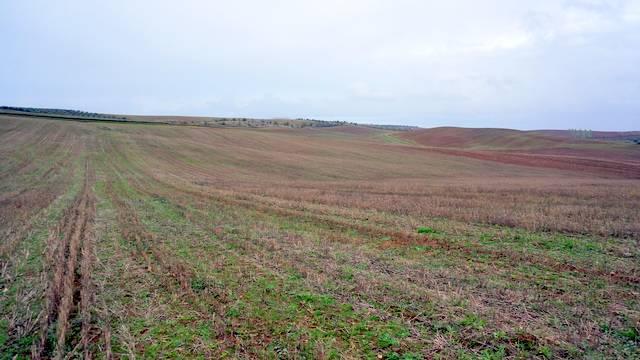 Finca de secano de 64 ha para plantar olivos en Extremadura