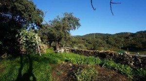 Casa con corral en la Sierra de Huelva