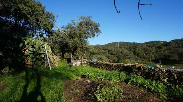 Casa con corral en la Sierra de Aracena