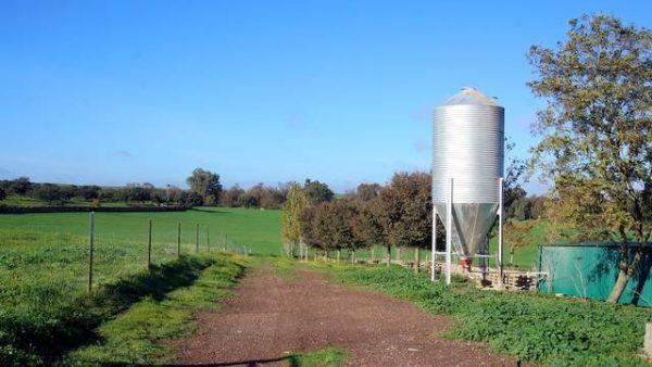 Finca agrícola con cortijo y buenas instalaciones en Badajoz