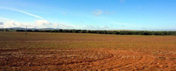Finca rústica en el sur de Extremadura