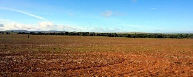 Finca rústica en la campiña sur de Extremadura