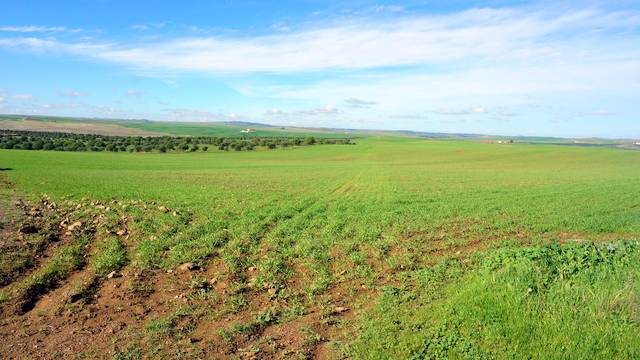 Finca de siembra en Extremadura