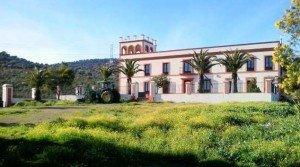 Venta de finca rústica con cortijo en la Baja Extremadura