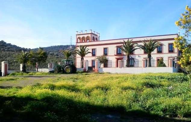 Venta de finca rústica con cortijo en la Baja Extremadura (113 ha)