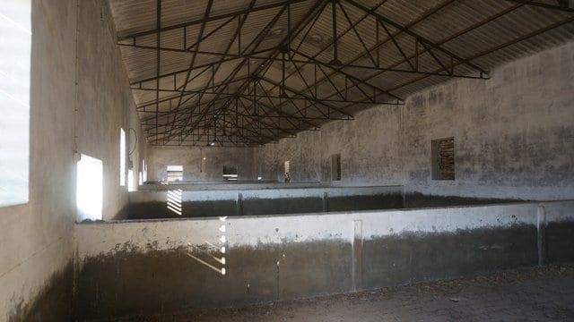 Naves de cerdos en Extremadura