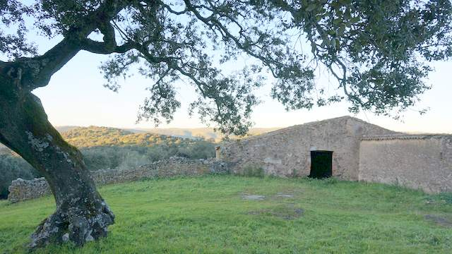 Cortijo viejo en la Sierra de Aracena