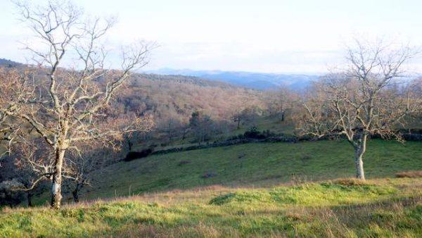 Paisaje de la Sierra de Aracena desde el terreno en venta