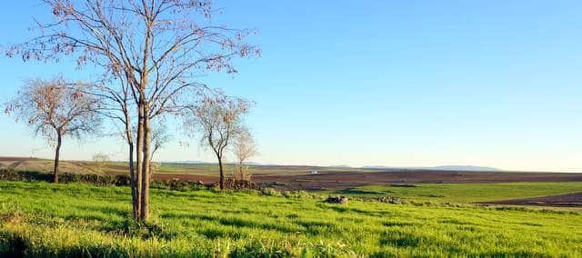 Finca agrícola y ganadera en venta en Extremadura