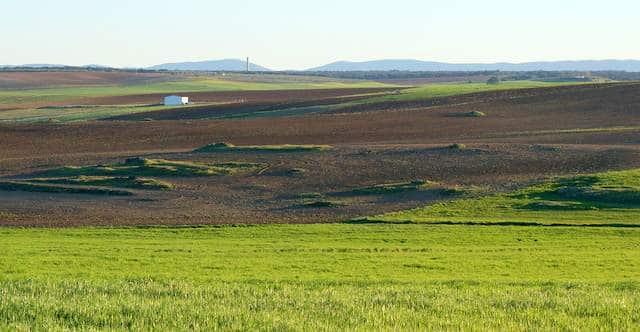 Finca agrícola y ganadera de 590 ha en sur de Extremadura