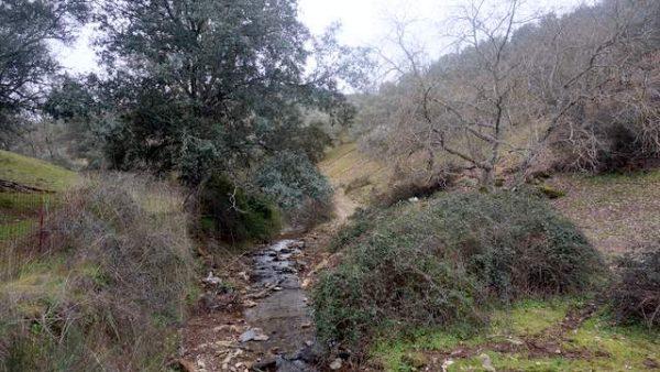 Finca en venta en la sierra de Tentudía junto al río Ardila