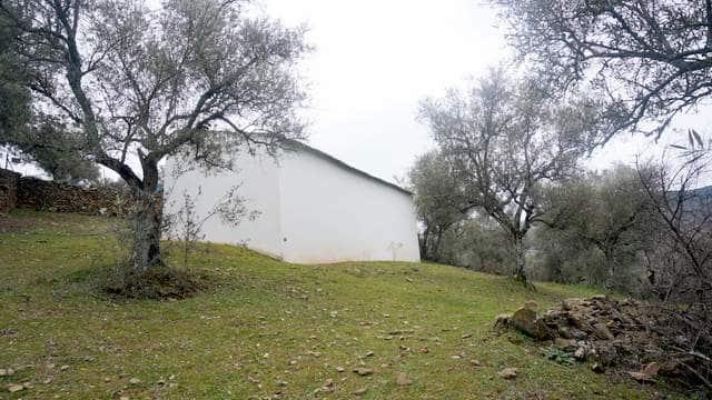Finca con casa de campo antigua para reformar