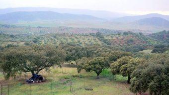 Vista de la sierra de Zafra desde el mirador de la villa