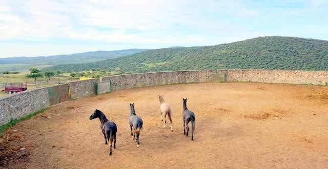 Finca rústica de caballos en Extremadura