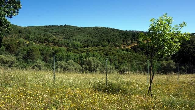 Extremadura: sierra de Tentudía