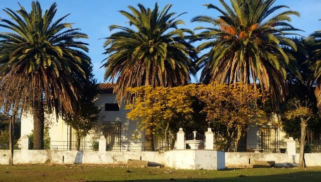 Finca ganadera de 24 ha con cortijo antiguo en Extremadura