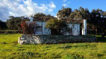 Vista frontal de la casa rústica en la parcela de la sierra de Aracena