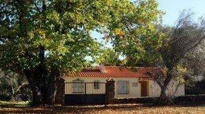 Finca pequeña con casa en Extremadura, sierra de Tentudía