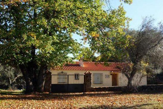 Finca pequeña (4 ha) con casa en Extremadura, sierra de Tentudía