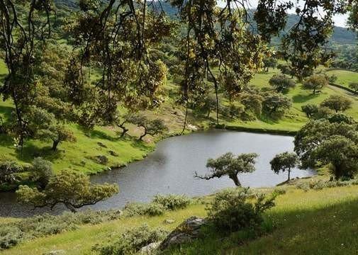 Finca rústica en el Parque Natural de Cornalvo en Extremadura