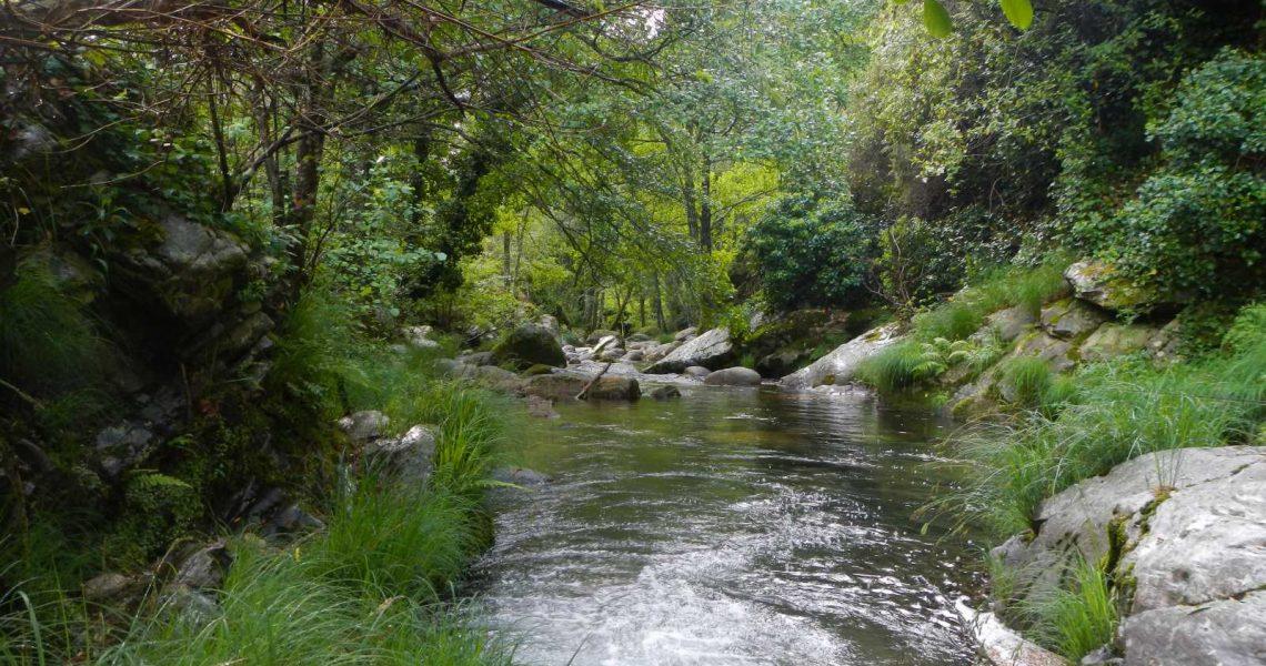 Finca rústica con caza mayor en la sierra de Gredos
