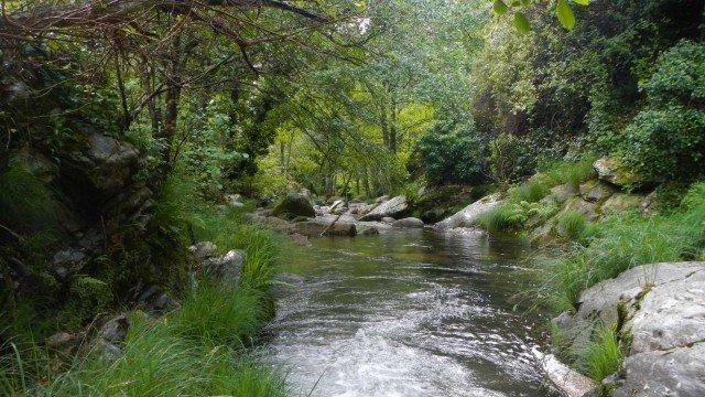 Finca de caza mayor en la sierra de Gredos