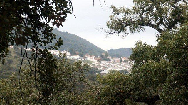 Finca rústica con alcornoques en la Sierra de Aracena