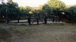 Finca de caballos en el sur de Extremadura