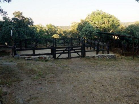 Finca de caballos en la sierra de Tentudía