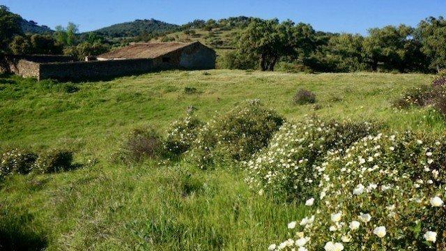 Vista de la casa de campo en la sierra de Aracena y su entorno