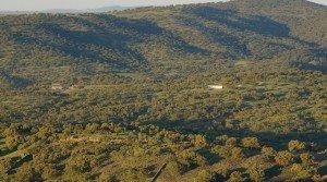 Venta de dehesa de encinas en el suroeste de Extremadura