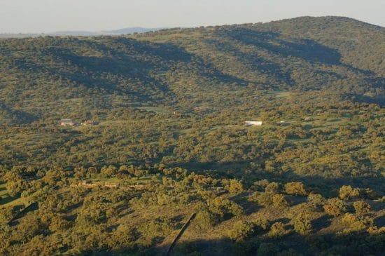 Finca dehesa y tierra de labor, de 250 ha, en el suroeste de Extremadura