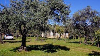 Finca con casa rústica de nueva construcción en la sierra de Huelva