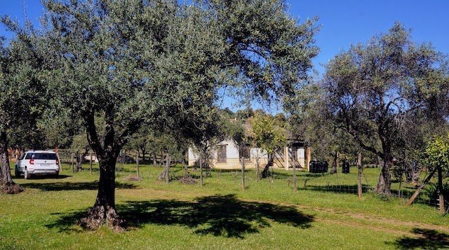 Finca rústica de 3 hectáreas con casa de campo en la sierra de Aracena