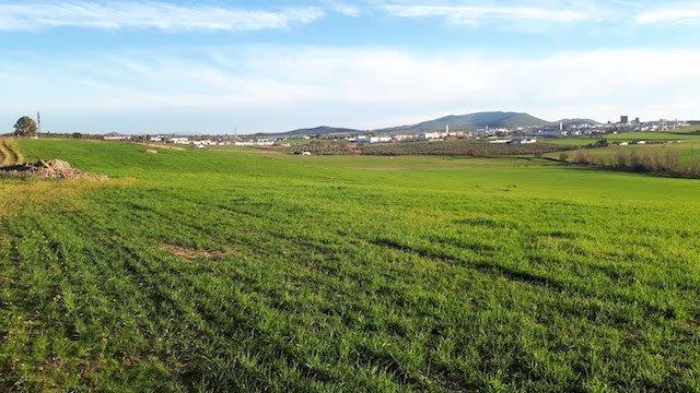 Finca agrícola en Extremadura con coto de caza